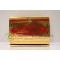 Korean Red Giseng - 1750mg 30 Cápsulas