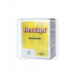 Flexicaps 90caps de 500mg