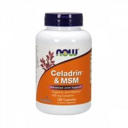 Celadrin & MSM 500mg 120 cápsulas - NOW