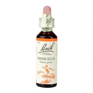 Essência Floral Bach - MIMULUS 20ml