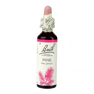 Essência Floral Bach - PINE 20ml